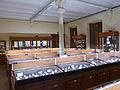 Musée de minéralogie de Strasbourg-Vitrines (5).jpg