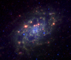 NGC2403 3.6 8.0 24 microns spitzer