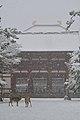 Nara, Todai-ji 20140203.JPG
