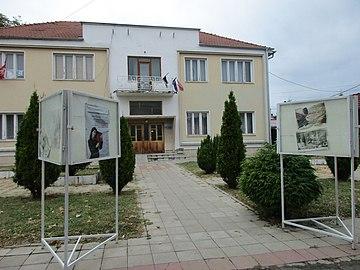 Narodna biblioteka Rade Drainac, Blace 02