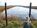 Nash Marshland - panoramio.jpg