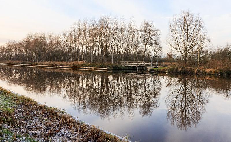 Национальный парк Weerribben-Wieden в Нидерландах. Новое свободное изображение Викимедии, автор фотографиии Dominicus Johannes Bergsma.