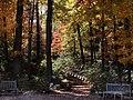 National Arboretum in November (15937136191).jpg
