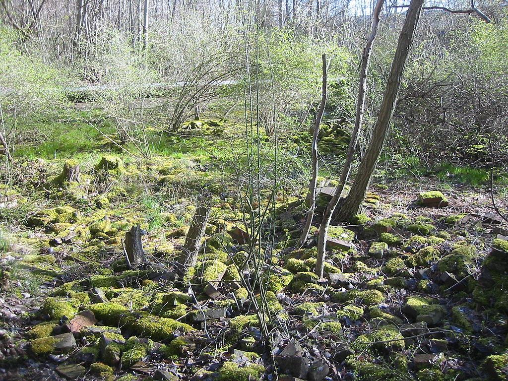Nature Park Sudgelande