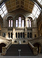 Natural History Museum London Central Hall494.jpg