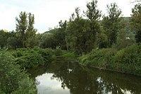 Natural monument Nebočadský luh, summer 2014 (3).JPG