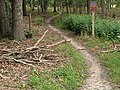 Nature trail 20200829 102128.jpg
