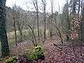 Naturschutzgebiet Weltersbachtal.jpg