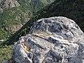 Necrópolis rupestre de San Vitor de Barxacova (Parada de Sil) (7931230092).jpg