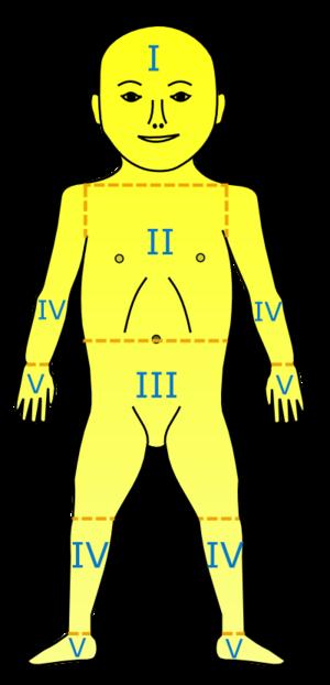 Levels of neonatal jaundice :* I - Bilirubin q...
