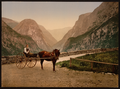 Norwegian Carriage, Hardanger Fjord, Norway WDL2617.png