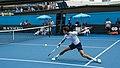 Novak Djokovic (Ser) (39690813512).jpg