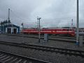 Novosibirsk, Russia (11442972086).jpg