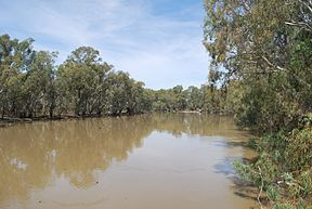 Nyah Murray River 002.JPG
