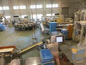 Food manufacturing - A rice cracker factory