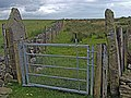 Old gateposts - geograph.org.uk - 1374469.jpg