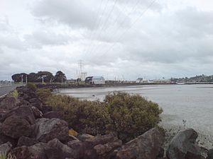 Onehunga - The current (2009) foreshore, dominated by man-made breakwaters and thus relatively inhospitable.