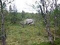 På veien til Krokåtsjøen - panoramio.jpg