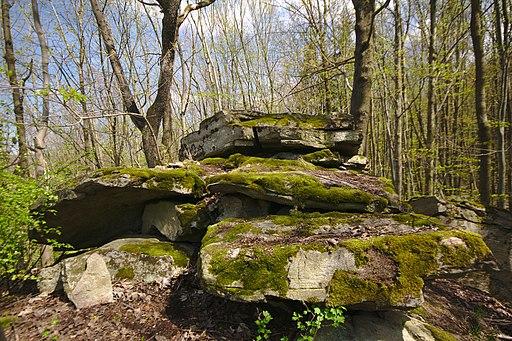Přírodní památka Nad Berankou, okres Blansko (04)