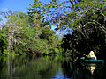 Paddling on the Hillsborough River.jpg