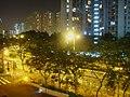 Pak Wo Road night.JPG