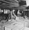 Pakketen bloembolen worden in kisten verpakt, Bestanddeelnr 900-7702.jpg