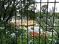 Park Scene - Chapultepec Park - Mexico City - Mexico - 03 (15419599611).jpg