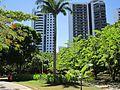 Parque da Jaqueira, Recife.jpg