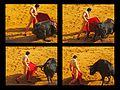 Pase de Enrique Ponce (7950573258).jpg