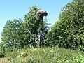 Pastrėvio sen., Lithuania - panoramio (11).jpg