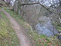 Path by Euchan Water - geograph.org.uk - 391497.jpg