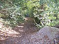 Path into Hammond's Wood in Checkendon, Oxfordshire.jpg