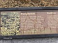 Periphyton at Mahogany Hammock^ - panoramio (1).jpg