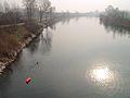 Pesca-del-siluro1.jpg