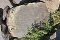 Petroglyphs from Ukhtasar 15092019 (348).jpg