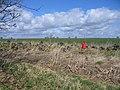 Pheasant feeder at Lower Radbourne - geograph.org.uk - 148869.jpg