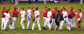 Een groep mannen in witte honkbaluniformen met rode krijtstrepen en rode honkbalpetten geven elkaar een high-five terwijl ze in tegengestelde richting bewegende lijnen passeren.