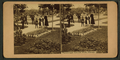 Picturesque Lincoln Park, Chicago, from Robert N. Dennis collection of stereoscopic views.png