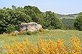 Pierre-megalithique.JPG