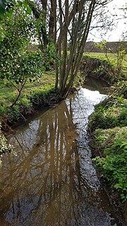 Pincey Brook