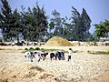 Planter du desert - panoramio (2).jpg