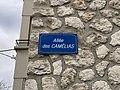 Plaque Allée Camélias - Maisons-Alfort (FR94) - 2021-03-22 - 2.jpg