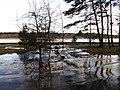 Pludi druvciema 2011 - panoramio (51).jpg