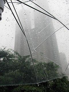 East Asian rainy season