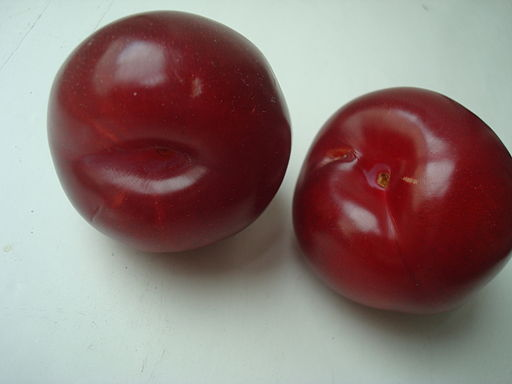 Plums (two)