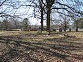 Point Church Cemetery Memphis TN 005.jpg