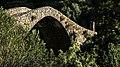 Pont Genois.jpg