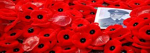 English: commemorative poppies laid at the Tom...