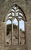 Portumna Priory East Window 2003 09 04.jpg