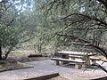Pot Creek Picnic Area 5.JPG